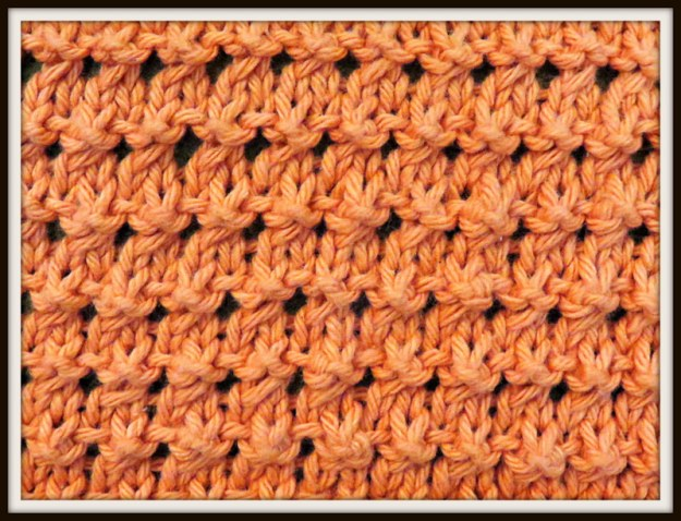 The Coral Knot Stitch Pattern.