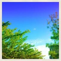 Summer Sky - Filter