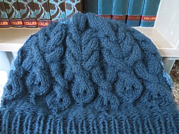 Cabled Snakes Hat.