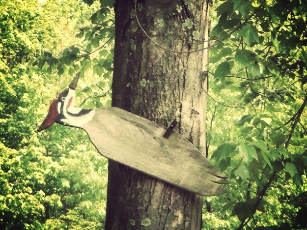 The Wooden Woodpecker