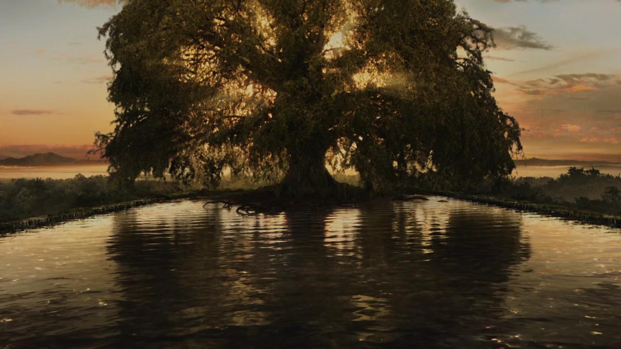 My Pretentious Tree of Life