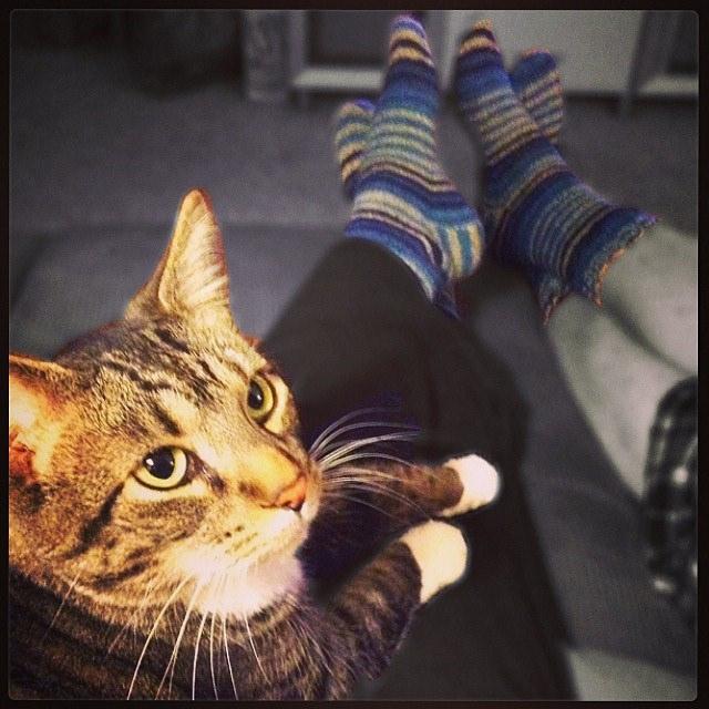 Trevor and I's Matching Socks.